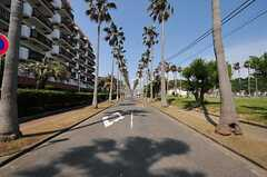 海沿いの通り。(2012-05-29,共用部,ENVIRONMENT,1F)