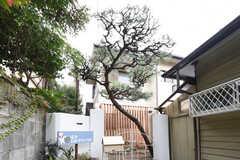 シェアハウスの外観。門扉の先には松の木が生えています。(2016-10-25,共用部,OUTLOOK,1F)