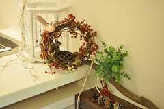 植物いろいろ。(2012-05-07,共用部,LIVINGROOM,2F)
