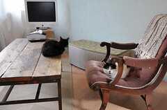 テーブルの上にいる黒猫がゴッホ。(2011-10-01,共用部,OTHER,2F)