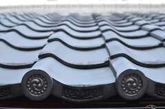 屋根瓦がカッコいいです。 (2014-03-04,共用部,OTHER,2F)