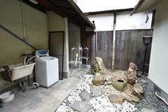 坪庭の様子。洗濯機が設置されています。(2016-05-07,共用部,LAUNDRY,1F)