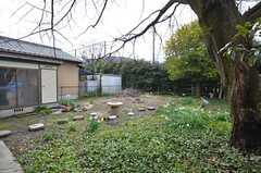 庭の様子2。(2015-03-04,共用部,OTHER,1F)
