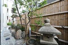 庭の様子。以前は京料理屋さんだったそうで、風情のある庭を残したのだとか。(2017-10-10,共用部,OTHER,1F)
