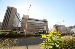 各線・京都駅前の様子。(2015-12-08,共用部,ENVIRONMENT,1F)