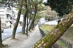 醍醐寺までは徒歩5分。向かう道のりはとても穏やかです。(2017-03-08,共用部,ENVIRONMENT,1F)