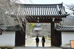 醍醐寺の正門。(2017-03-08,共用部,ENVIRONMENT,1F)