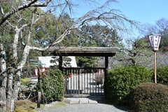 京都市営地下鉄東西線・小野駅近くの梅園。(2017-03-08,共用部,ENVIRONMENT,1F)