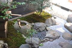 坪庭の様子。(2013-08-02,共用部,OTHER,1F)