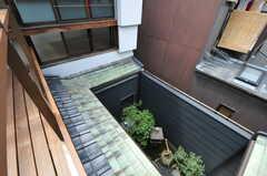 ベランダから見下ろした坪庭の様子。(2013-08-02,共用部,OTHER,2F)