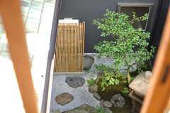 窓からは坪庭の風景が。(2013-08-02,共用部,OTHER,2F)