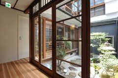 階段から坪庭を見るとこんな感じ。(205号室)(2013-08-02,共用部,OTHER,1F)