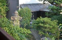 お隣の庭も立派です。(2013-08-09,共用部,LIVINGROOM,2F)