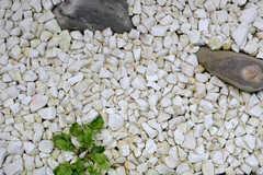 玉砂利が敷き詰められています。(101号室)(2014-12-10,専有部,ROOM,1F)