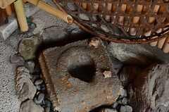 親子カエル。(2013-06-23,周辺環境,ENTRANCE,1F)