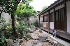 庭の様子。(2013-06-23,共用部,OTHER,1F)