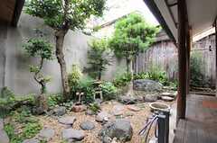 庭の様子2。(2013-06-23,共用部,OTHER,1F)