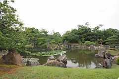二条城の庭園の様子。(2013-06-23,共用部,ENVIRONMENT,1F)