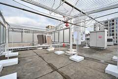 屋上の様子2。ネットで囲まれた内側が洗濯物を干せるスペースです。(2017-01-17,共用部,OTHER,5F)