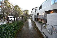 木屋町通を流れる小さな川。(2017-01-17,共用部,ENVIRONMENT,1F)