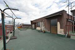 屋上の様子2。物干しも可能です。(2016-07-04,共用部,OTHER,4F)
