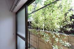 全室、物干し用のポールハンガーが渡されています。まだら入りヤマボウシが咲いています。(101号室)(2017-05-15,専有部,ROOM,1F)