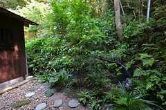 専用庭の様子。雨が降った後などは敷地内を水が流れるのだそう。(101号室)(2014-09-09,専有部,ROOM,1F)