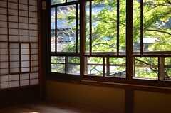 専有部の窓には緑がわんさか。(205号室)(2014-12-11,専有部,ROOM,1F)