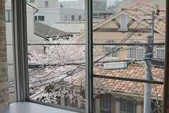 3階からも桜が。(302号室)(2016-04-06,専有部,ROOM,3F)