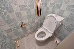 女性用トイレの様子。(2017-05-01,共用部,TOILET,1F)