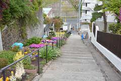 近くの階段の様子。階段沿いの花壇はよく手入れされています。(2017-05-01,共用部,ENVIRONMENT,1F)