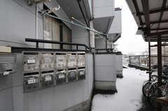 部屋ごとに用意されたポストの様子。(2012-03-03,共用部,OTHER,1F)