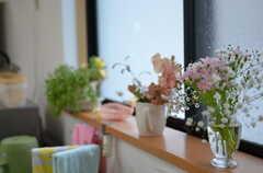 窓辺のお花たち。(2012-03-03,共用部,OTHER,1F)