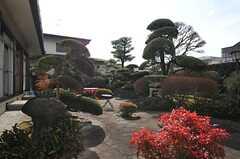 立派な日本庭園の装いです。(2014-01-28,共用部,OTHER,1F)