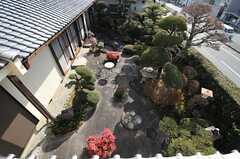 ベランダから見た庭の様子。(201号室)(2014-01-28,専有部,ROOM,2F)