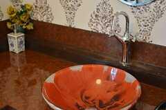 大胆なプリントがされた洗面ボウル。(2014-03-05,共用部,OTHER,2F)