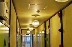 廊下には照明が連なっています。(2011-11-09,共用部,OTHER,2F)
