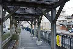 シェアハウスから近鉄奈良線・河内小阪駅へ向かう道の様子2。(2015-01-12,共用部,ENVIRONMENT,1F)
