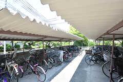 自転車置き場の様子。(2016-08-08,共用部,GARAGE,1F)