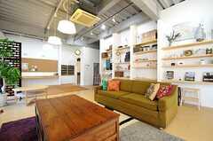 壁の飾り棚には、たくさんの雑貨が並んでいます。(2014-04-09,共用部,LIVINGROOM,1F)