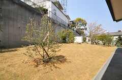 庭の様子。(2014-04-09,共用部,OTHER,1F)