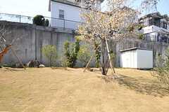 庭の様子2。(2014-04-09,共用部,OTHER,1F)