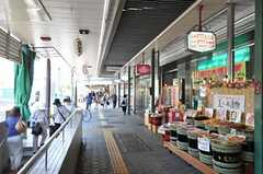 天王寺駅前商店街の様子。アーケードになっているので雨の日や日差しの強い日はありがたいです。(2011-08-08,共用部,ENVIRONMENT,1F)