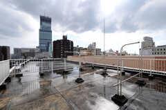 屋上の様子。物干ができます。(2012-09-15,共用部,OTHER,8F)