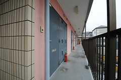 廊下の様子。(2013-04-30,共用部,OTHER,2F)