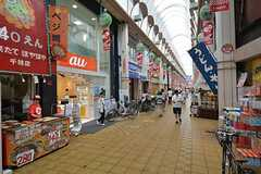 千林商店街の様子。(2015-08-13,共用部,ENVIRONMENT,1F)