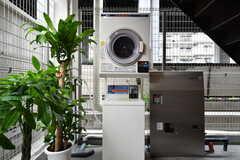 洗濯機と乾燥機が設置されています。コイン式です。(2017-10-06,共用部,LAUNDRY,1F)