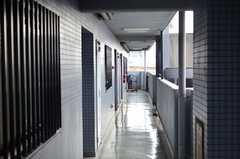 マンションの共用廊下の様子。(2013-11-10,共用部,OTHER,8F)