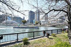 近くを流れる大川の様子。水上バスも運行しています。(2017-04-04,共用部,ENVIRONMENT,1F)