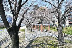大川沿いの公園の様子。(2017-04-04,共用部,ENVIRONMENT,1F)